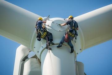 Windpark operator